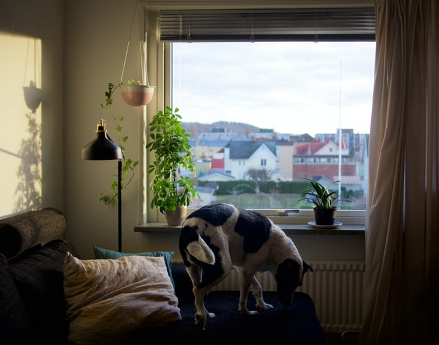 investissement immobilier -1